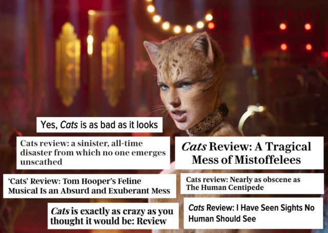 cats-reviews-1576777051-640x454.jpg